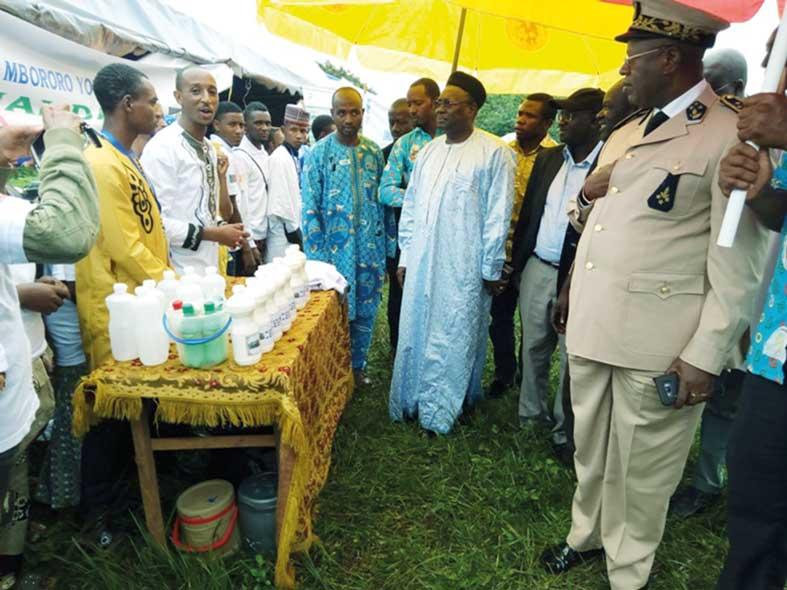 Filière laitière: Une production nationale à densifier