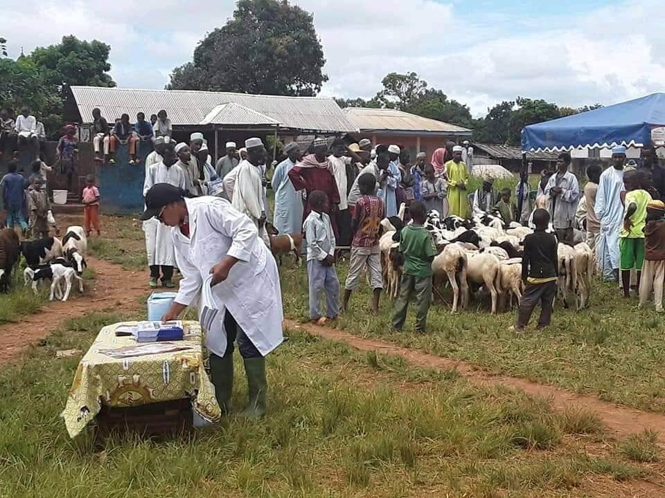Lancement gratuite de la vaccination contre la peste des petits ruminants dans la région de l'Est