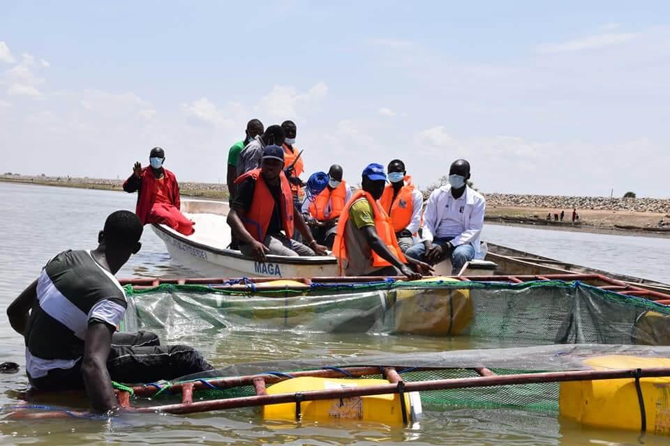 Développement de l'aquaculture dans la région de l'Extrême-Nord